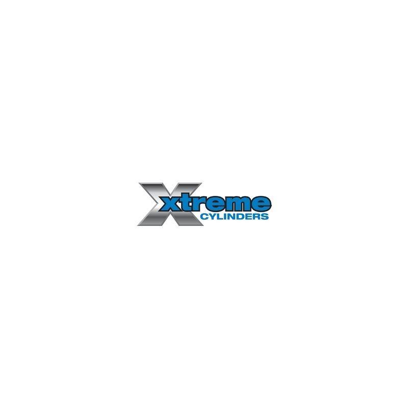 Hydraulic Cylinder 84-4466-170